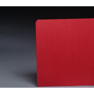 File Folders Red 1/3 Cut Top Tab