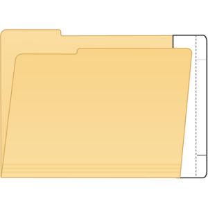 Tabbies 55995 Extenda Folder Strips 9 X 3.75